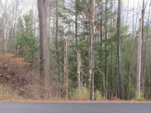 Middle Rd, Lake George, NY 12845