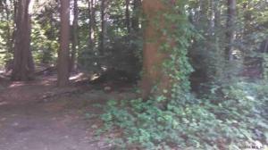 0000 Treasure Point Rd, Bolton Landing, NY 12814