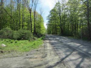 Lot 2 Sly Pond Rd, Fort Ann, NY 12827