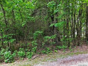 Lot 7 Lake View Hill Road, Bolton Landing, NY 12814