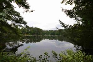 Tall Pines Dr, Lake Luzerne, NY 12846