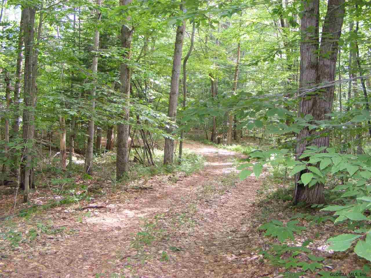 Northville image 27