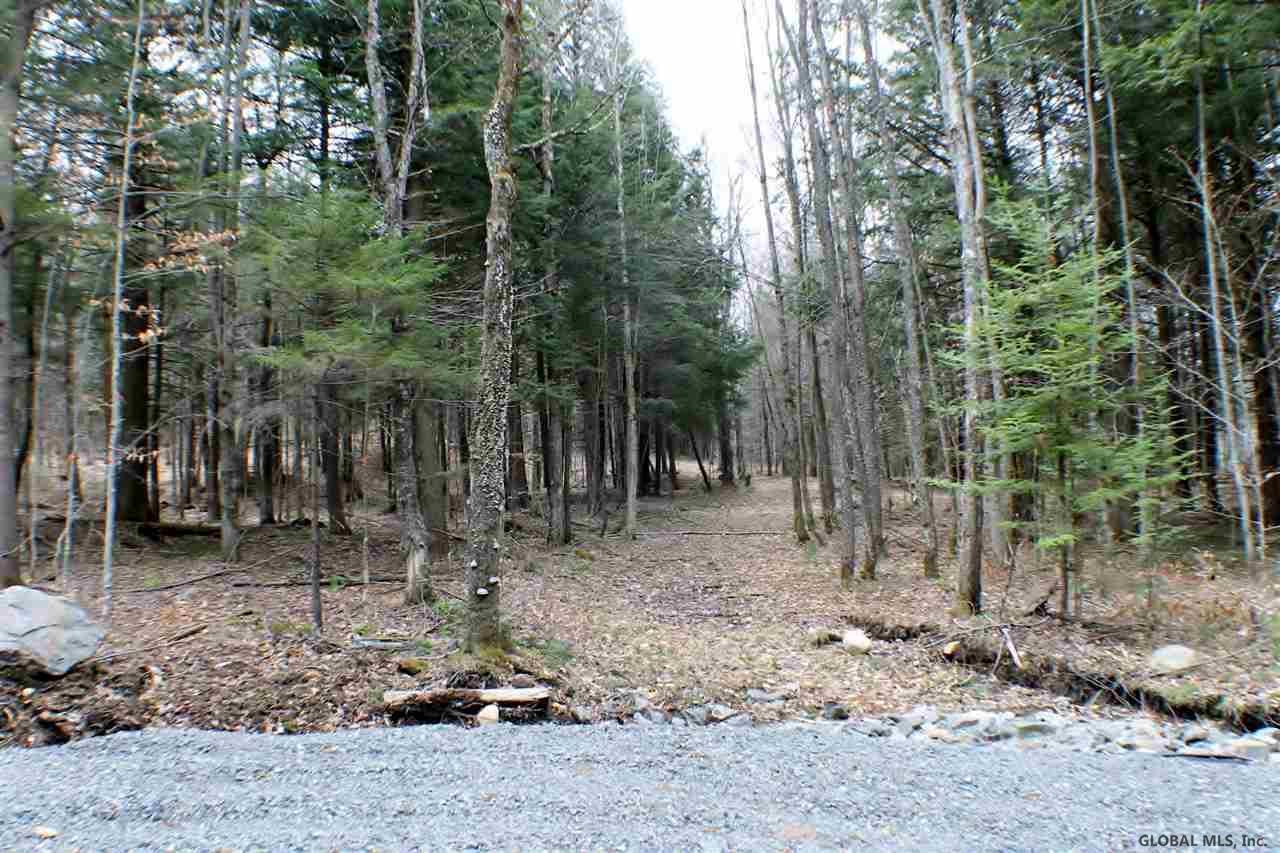 Northville image 11