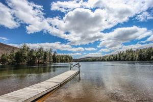 Lot 28 Lapland Lake Rd, Northville, NY 12134