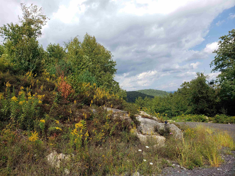 Lake Lazurne image 31