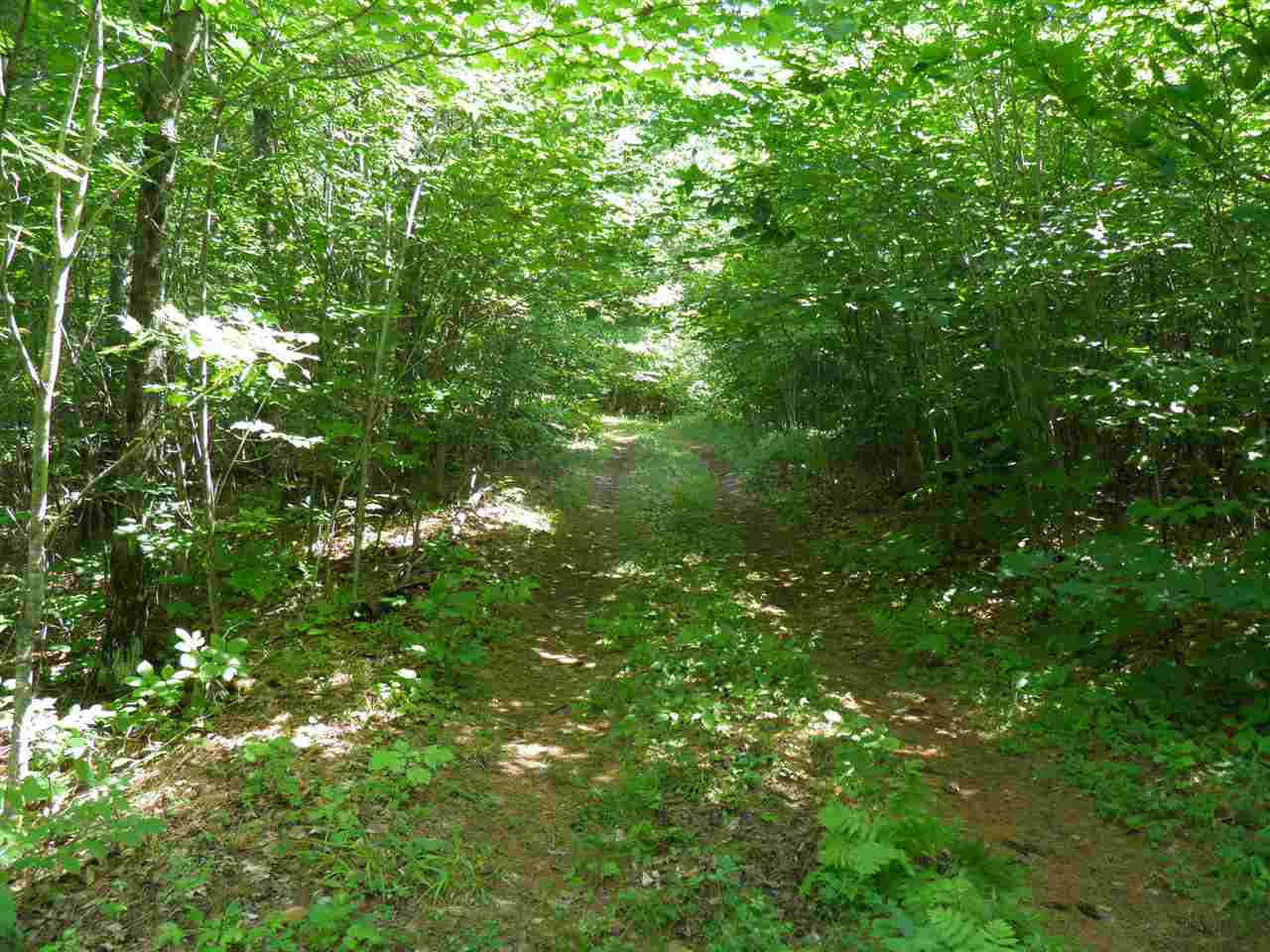 Keeseville image 10