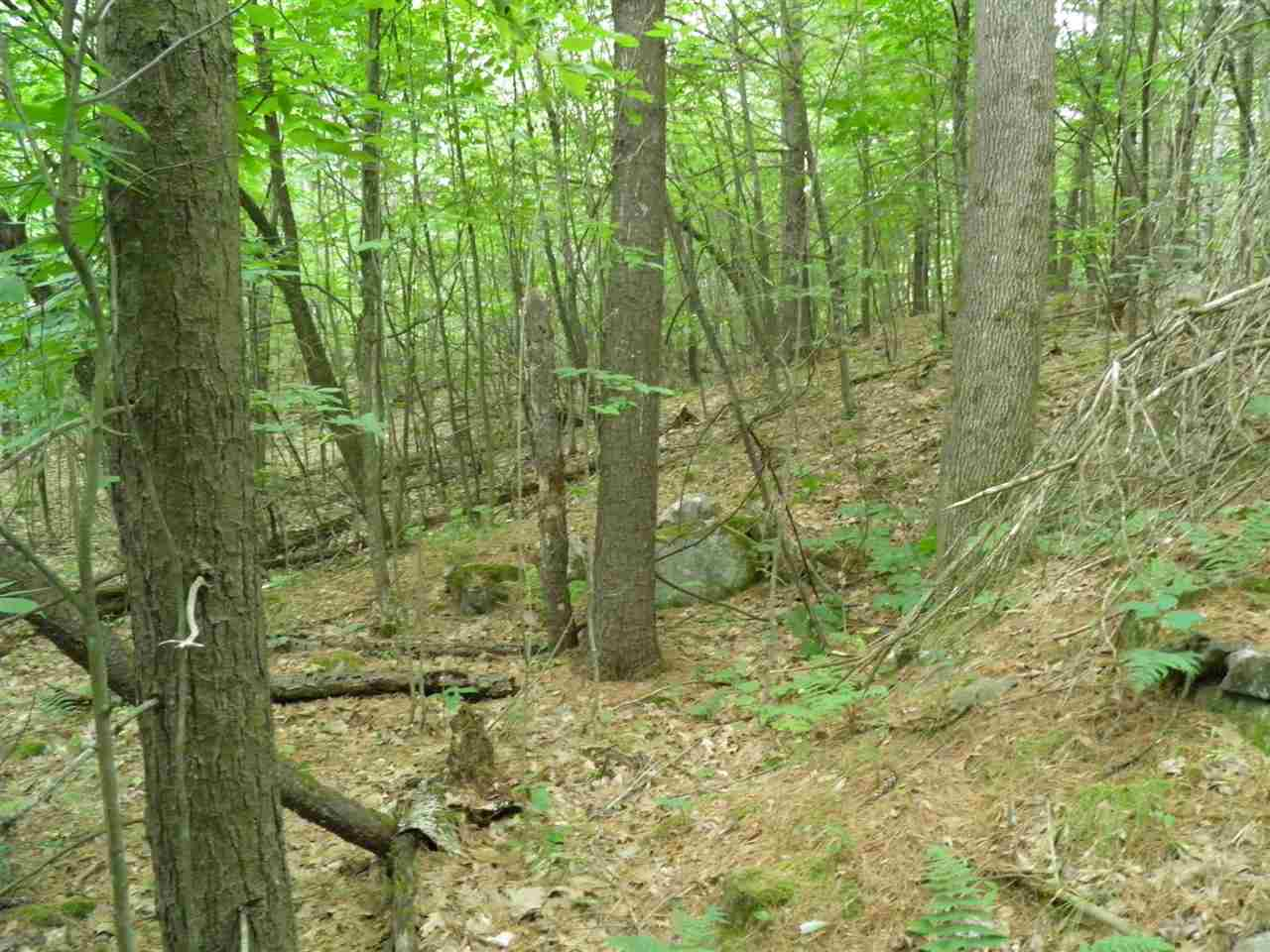 Keeseville image 4