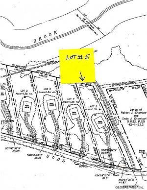 00 Lot # 5 Dodd Hill Rd, Hague, NY 12836