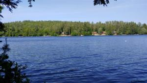 Lake Front building lot on Loon Lake