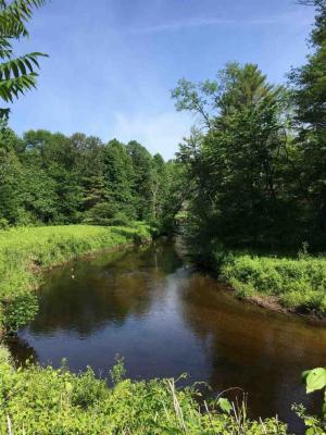 Upstate NY Land for Sale | Purchase Affordable Residential
