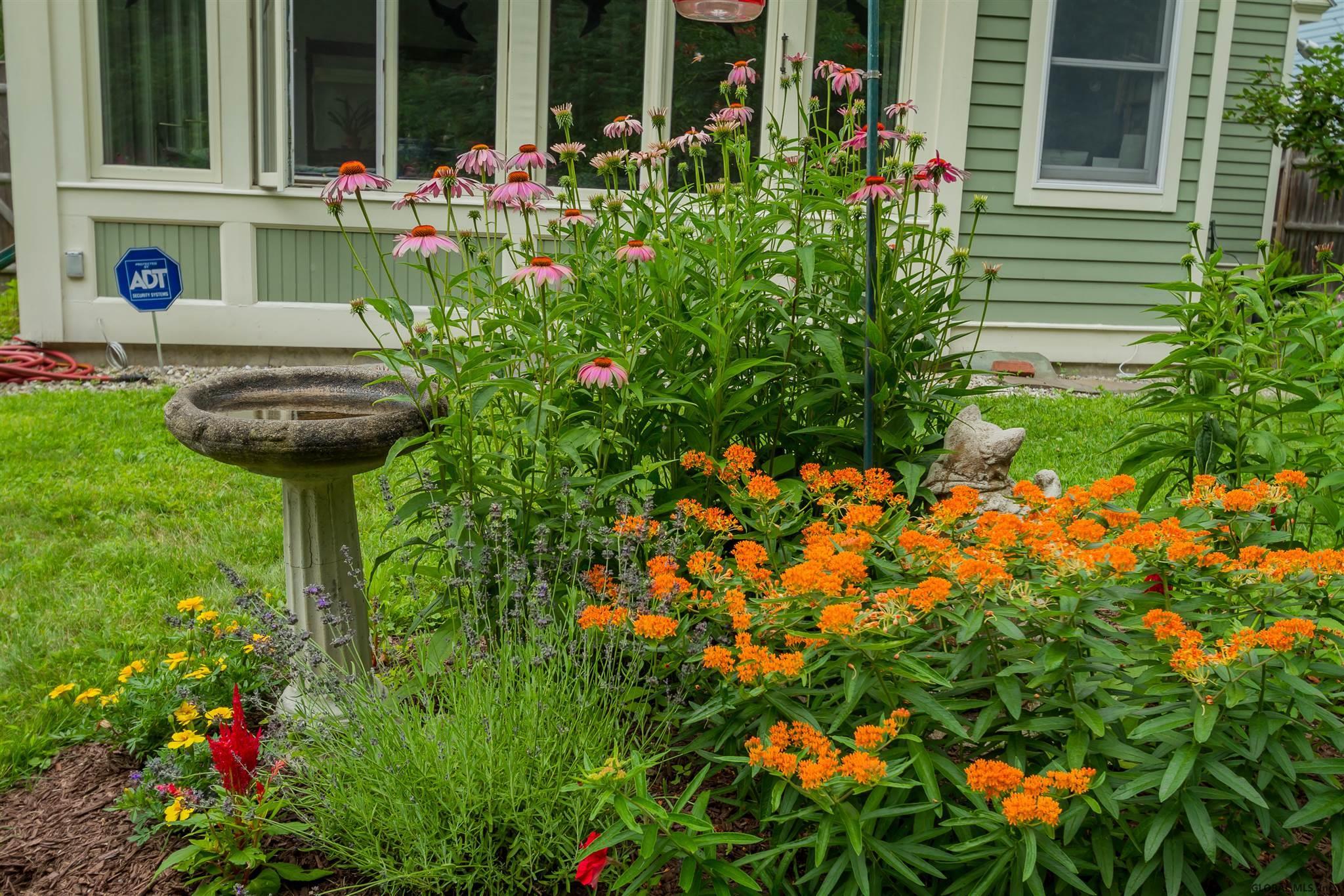 Saratoga S image 50