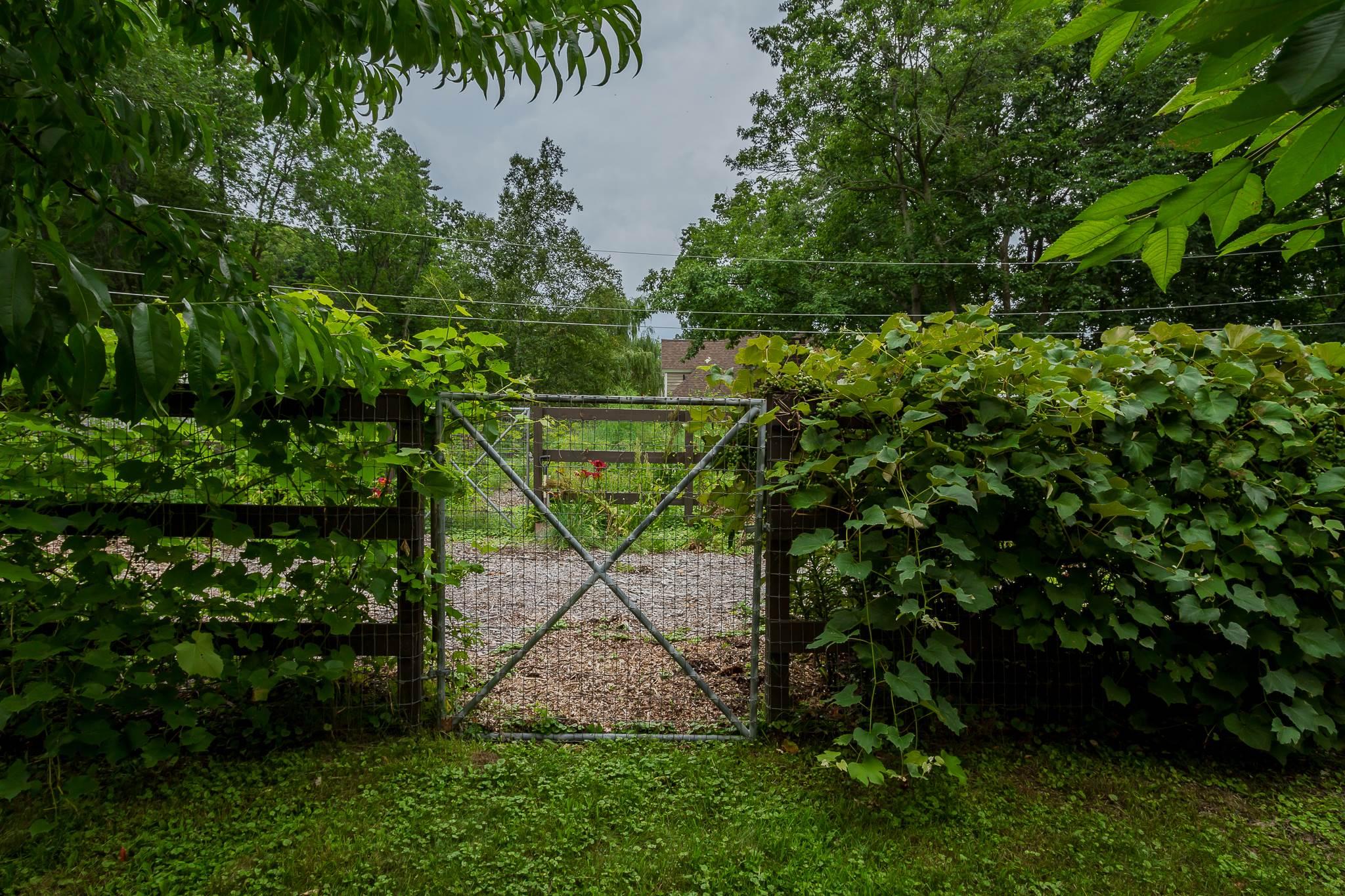 Saratoga S image 21