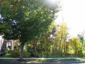 15 Aurora Av, Saratoga Springs, NY 12866