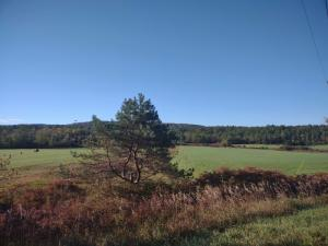 Lot 1 County Route 1, Putnam Station, NY 12861