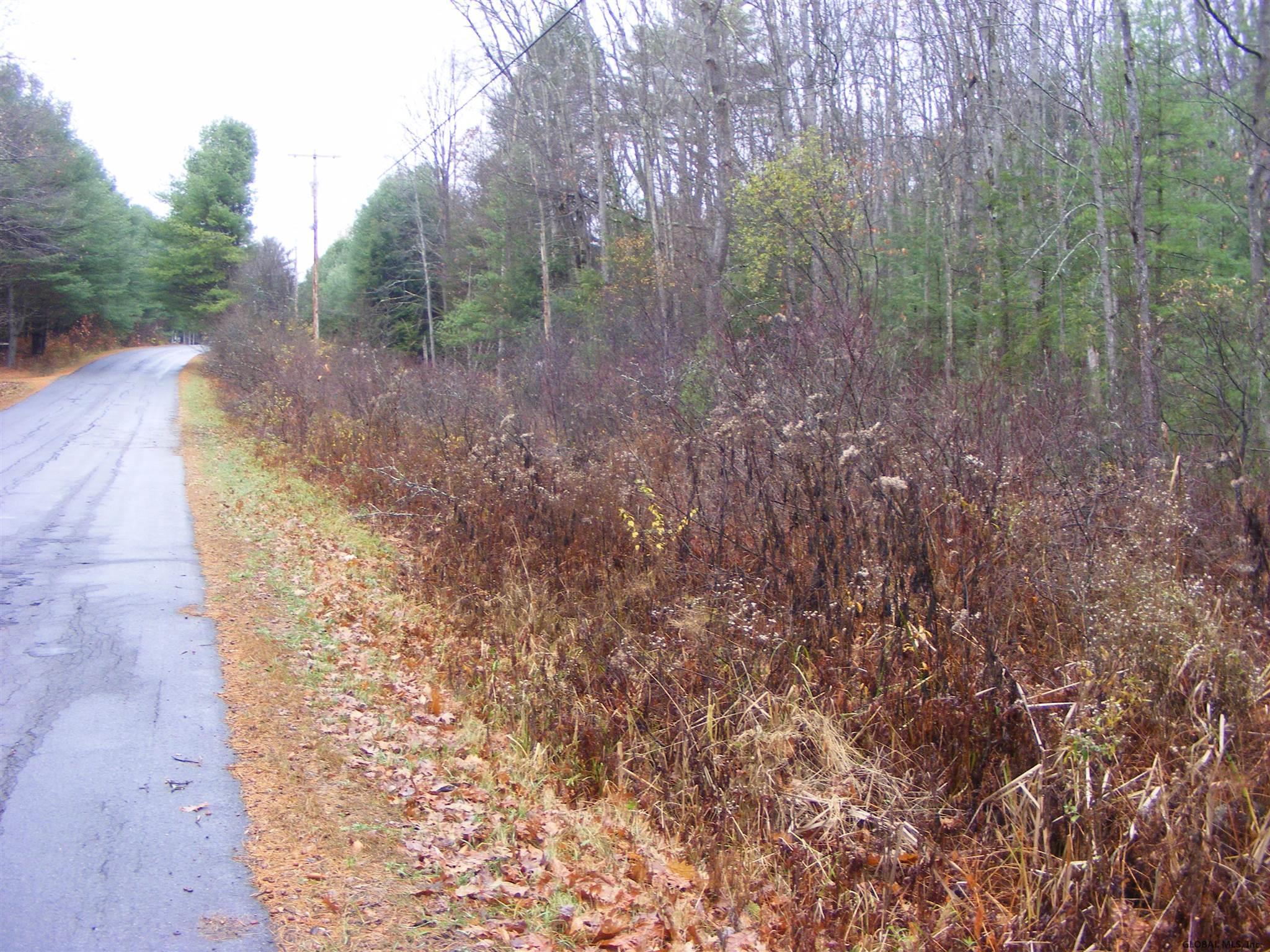 Northville image 2