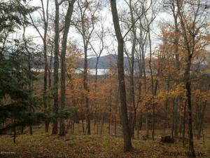 Valley Woods Rd, Bolton Landing, NY 12814
