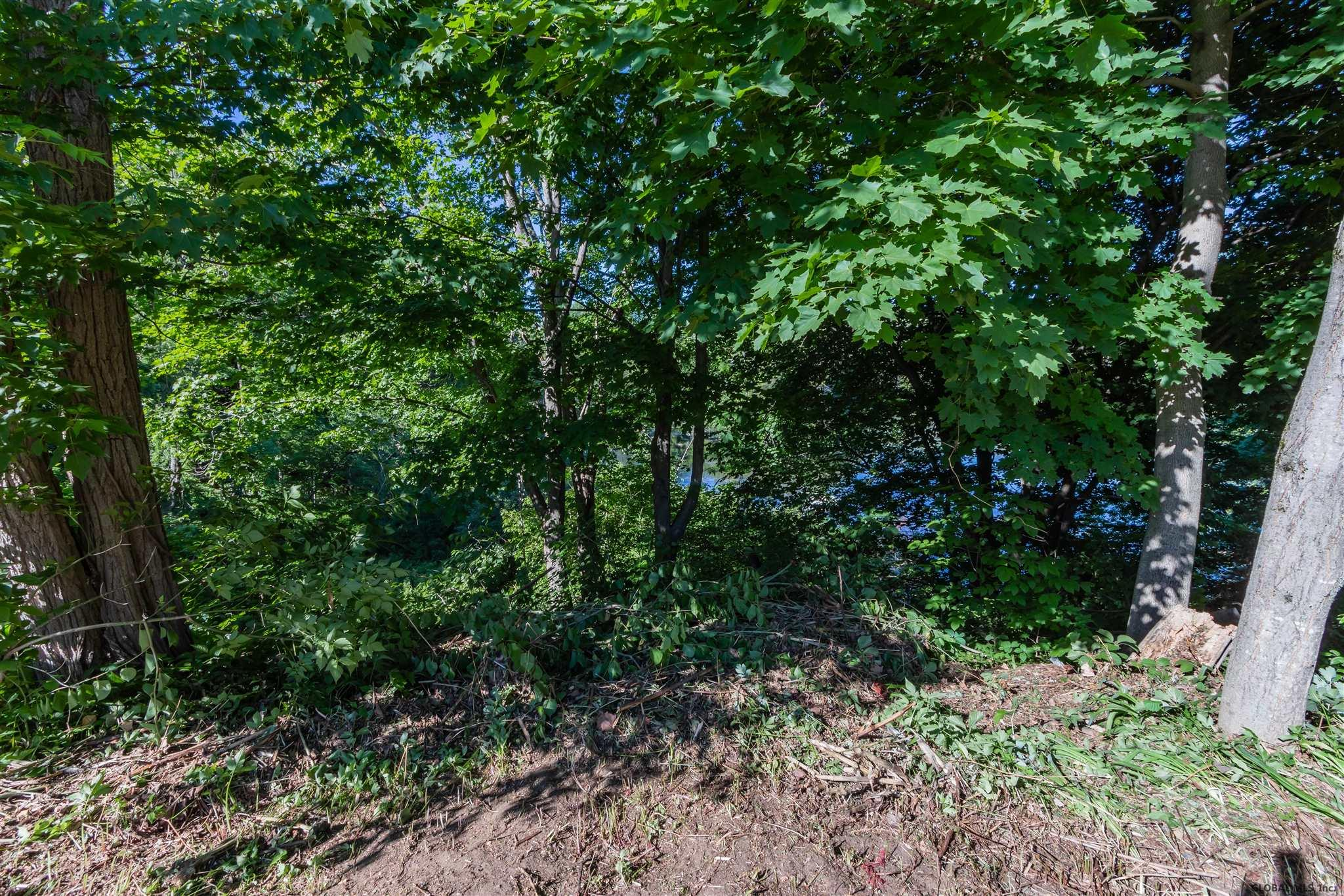 Northville image 56