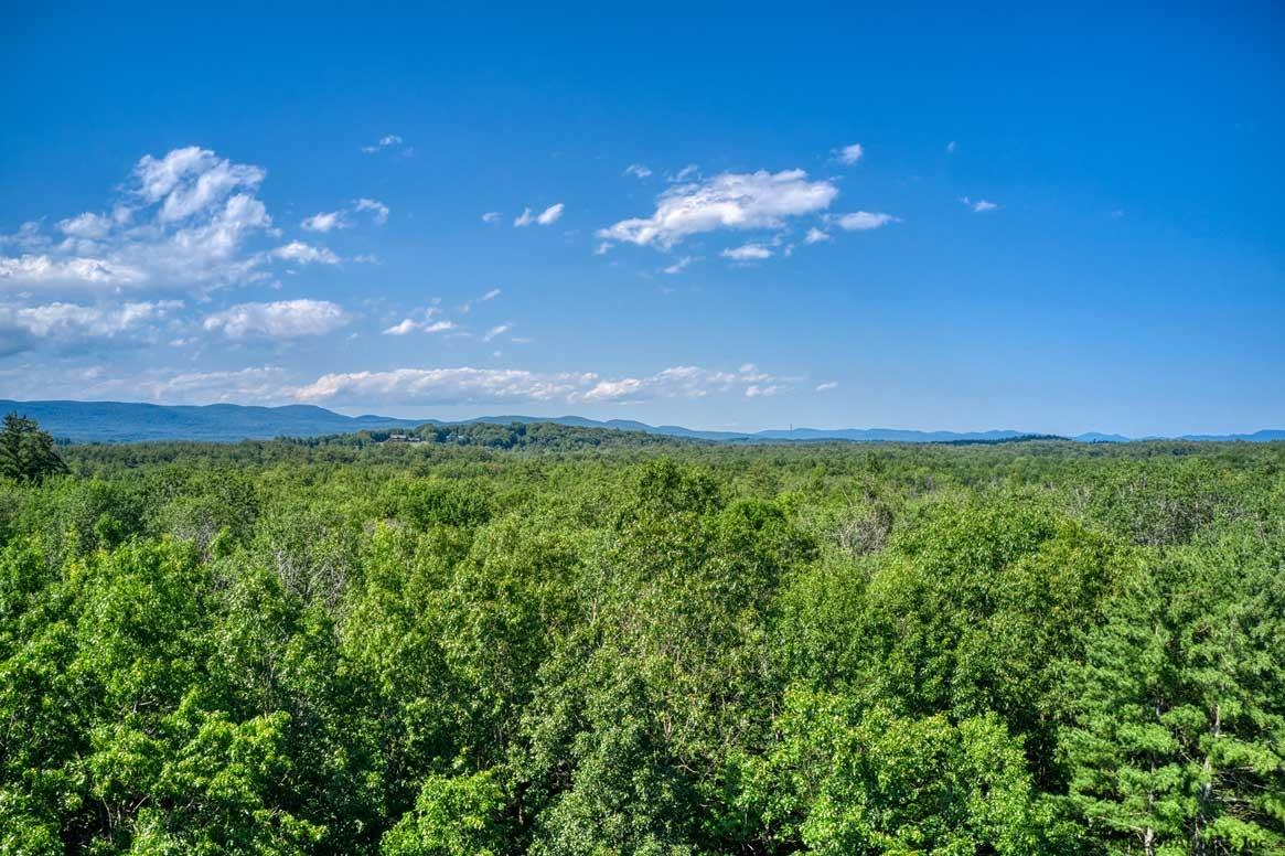 Gloversville image 7