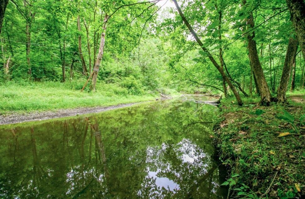 Claverack image 44