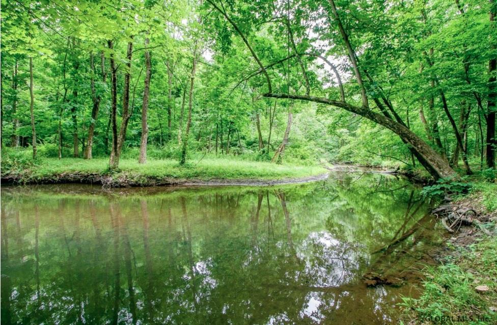 Claverack image 45