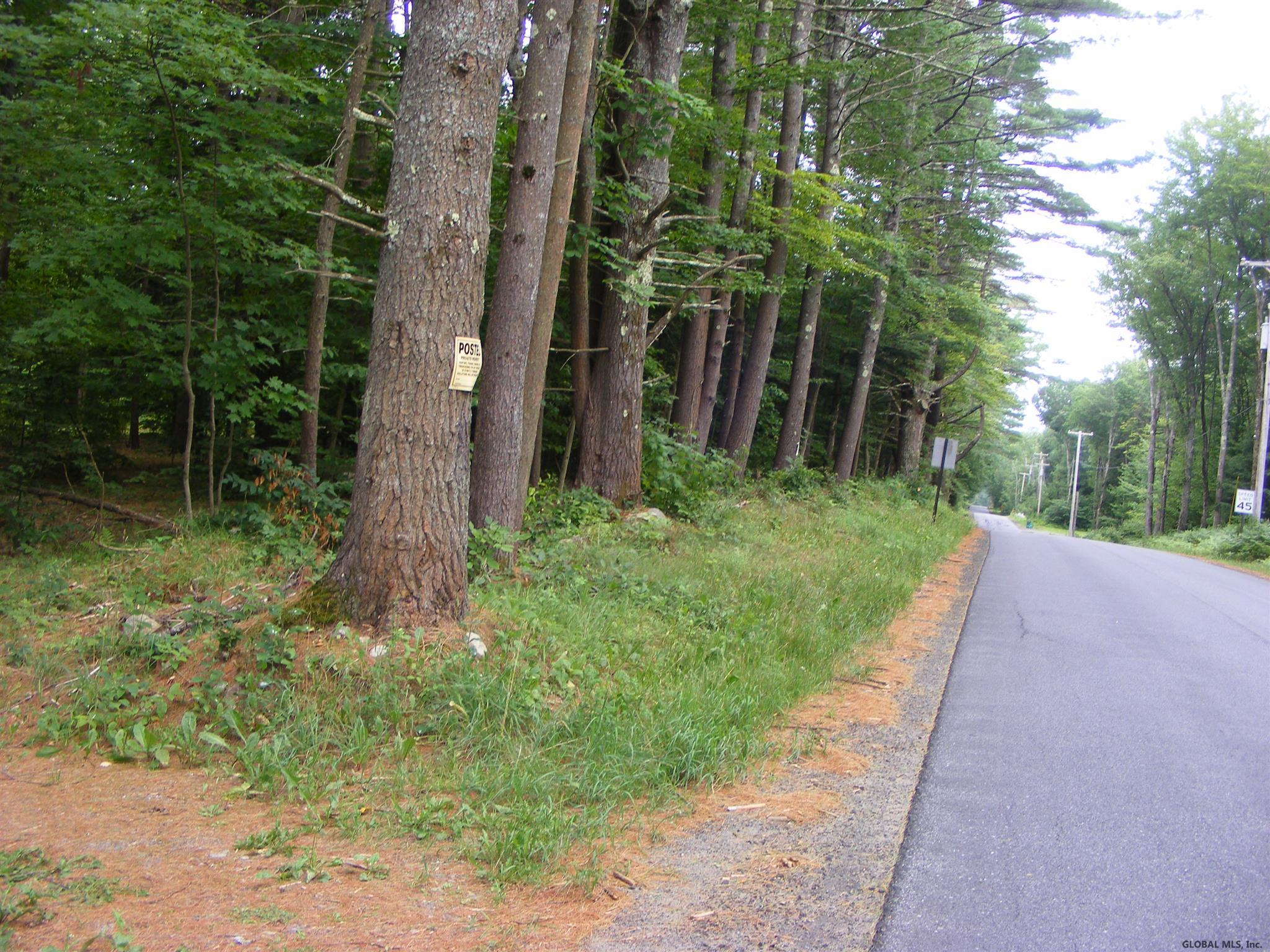 Northville image 29