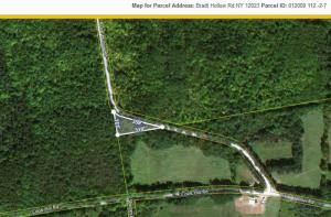 Bradt Hollow Rd, Berne, NY 12023