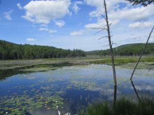 Charley Hill Rd, Schroon Lake, NY 12870