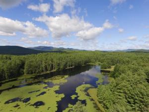 Antler Lake Rd, Johnsburg, NY 12843