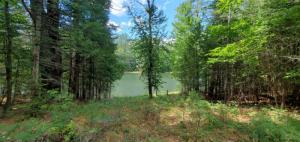 00 Clearwater Dr, Brant Lake, NY 12815
