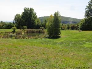 10 Mountain View Dr, Coxsackie, NY 12051