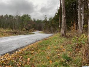 Paul Horn Rd, Catskill, NY 12414