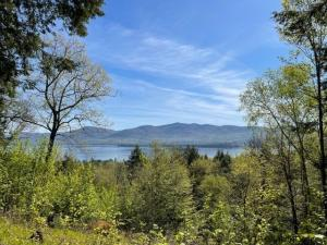 3513 Lake Shore Dr, Lake George, NY 12845