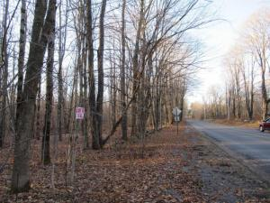 Lot 6 Dairy Hill Rd, Little Falls, NY 13365