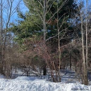 Pine Ridge Rd, Coeymans Hollow, NY 12046