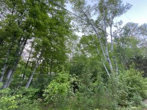 Lot 1 Mountain Rd, Hadley, NY 12835