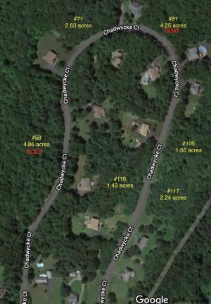 117 Chadwycke Ct, North Chatham, NY 12132