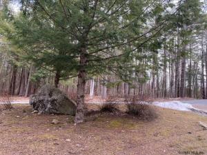 Pine Tree La, Diamond Point, NY 12824