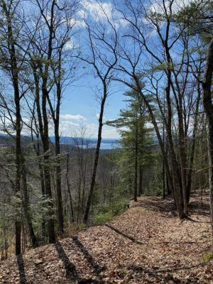 01 Coolidge Hill Rd, Bolton Landing, NY 12814