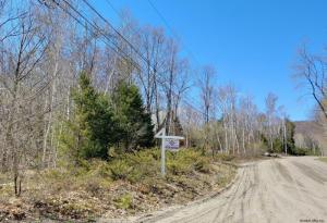 Mohican Trail, Johnsburg, NY 12853