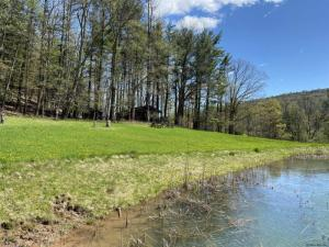 510 Mill Valley Rd, Middleburgh, NY 12122