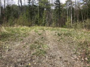 Tbd Old Schroon Rd, Schroon Lake, NY 12870-9999