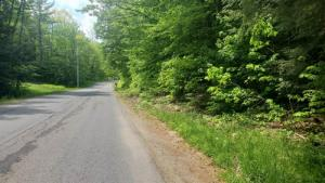Willie Rd, Johnstown, NY 12095