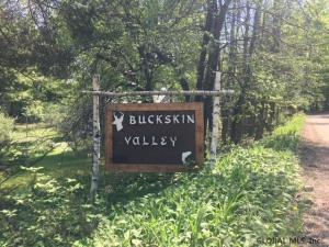 Buckskin Valley Rd, Johnsburg, NY 12843