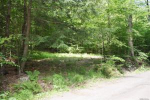 Red Pond Rd, Petersburgh, NY 12138