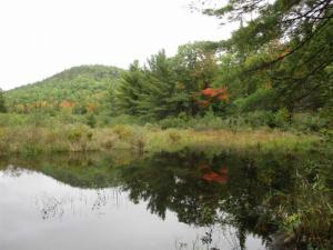 Buck Hill Rd, Keeseville, NY 12944